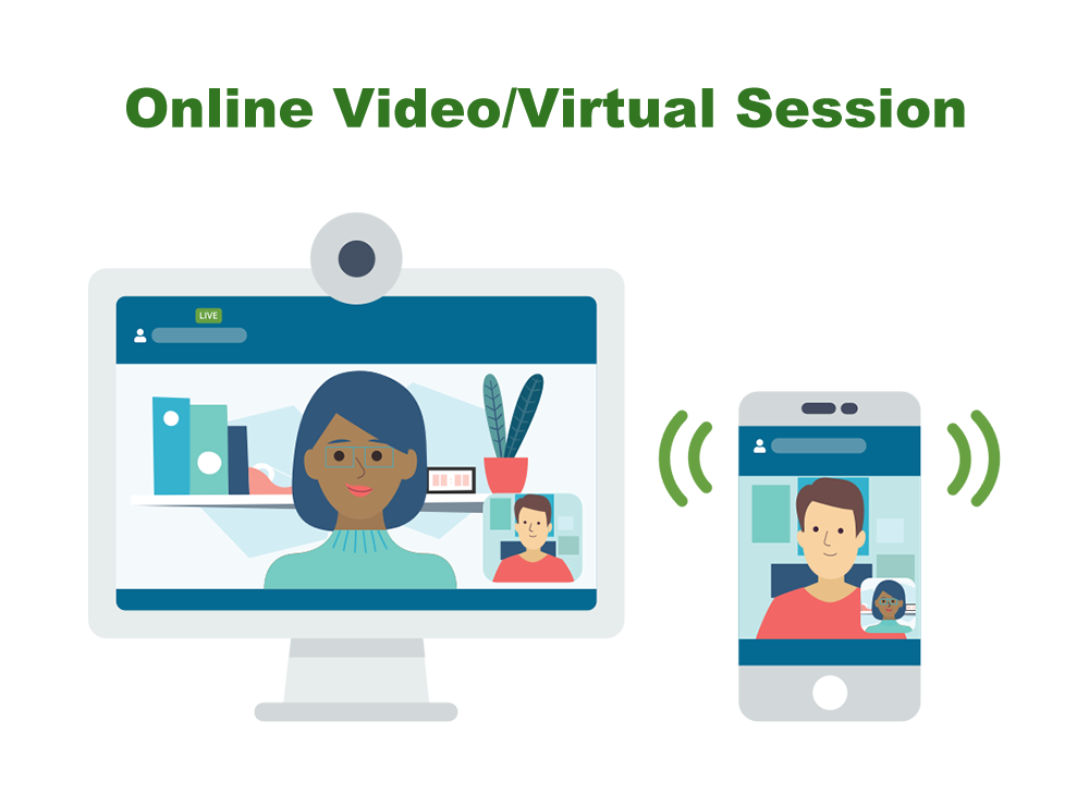 Online Video Virtual Session